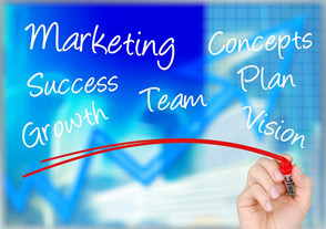 What business plan for investors must contain